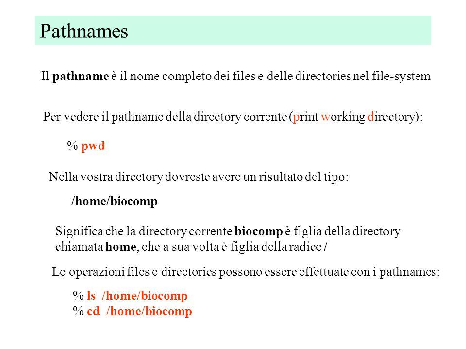 Comandi: copiare, muovere, cancellare files copiare file o directory (copy) % cp file1 file2 % cp file1 subdir/file1 % cp file1../file1 muovere file e directory (move) % mv file1 file2 % mv file1 subdir/file2 % mv file1../file2 cancellare file (remove) e directory (remove directory) % rm file % rmdir directory (solo se vuota)