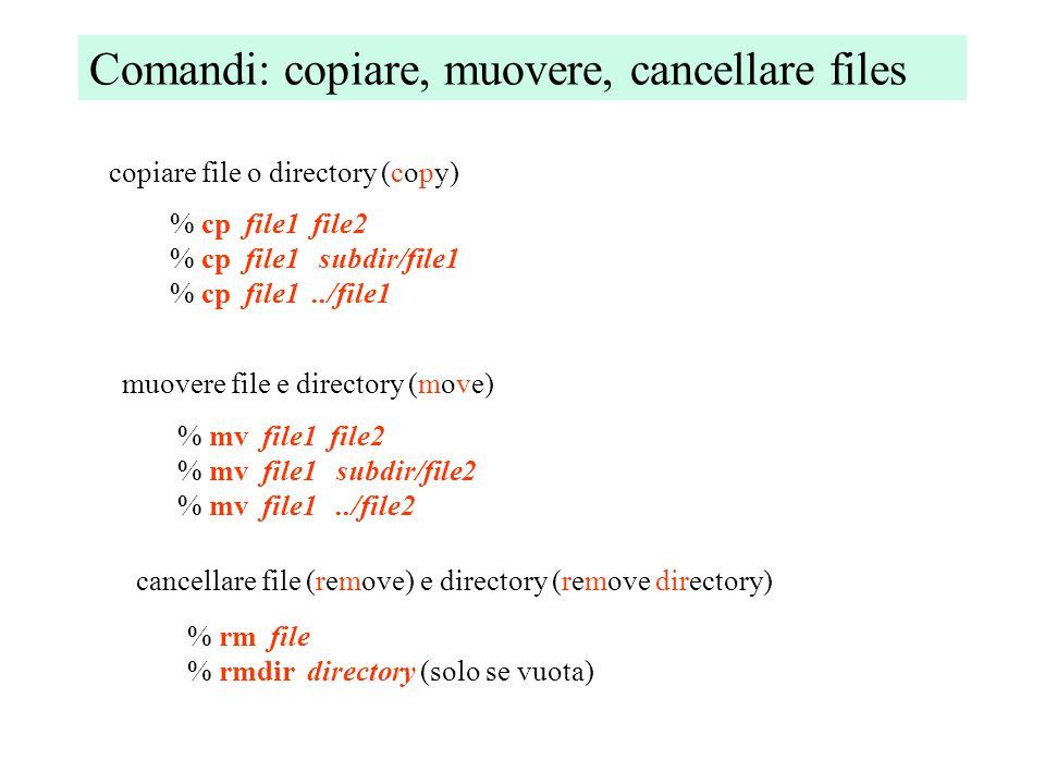Comandi: leggere i files visualizzare il contenuto di files (concatenate) % cat file % cat file1 file2 visualizzare 1 pagina alla volta (less) % less file visualizzare le prime righe (head) e le ultime (tail) righe % head file % tail file
