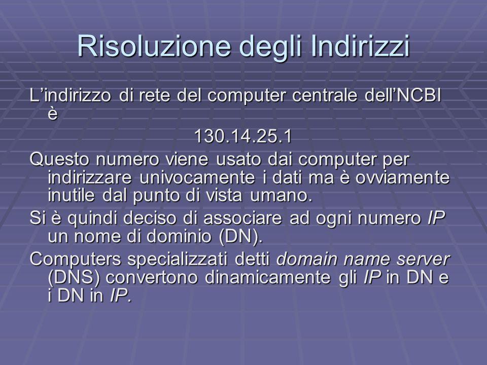 Risoluzione degli Indirizzi L'indirizzo di rete del computer centrale dell'NCBI è 130.14.25.1 Questo numero viene usato dai computer per indirizzare univocamente i dati ma è ovviamente inutile dal punto di vista umano.