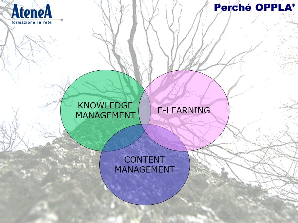 Perché OPPLA' KNOWLEDGE MANAGEMENT CONTENT MANAGEMENT E-LEARNING