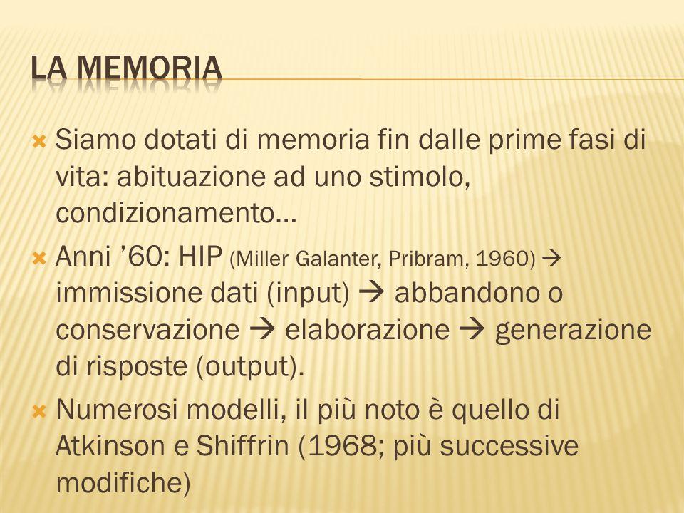  Siamo dotati di memoria fin dalle prime fasi di vita: abituazione ad uno stimolo, condizionamento…  Anni '60: HIP (Miller Galanter, Pribram, 1960)