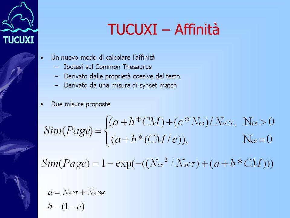 TUCUXI – Affinità Un nuovo modo di calcolare l'affinità –Ipotesi sul Common Thesaurus –Derivato dalle proprietà coesive del testo –Derivato da una misura di synset match Due misure proposte