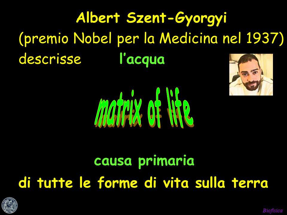 Biofisica causa primaria di tutte le forme di vita sulla terra Albert Szent-Gyorgyi (premio Nobel per la Medicina nel 1937) descrisse l'acqua
