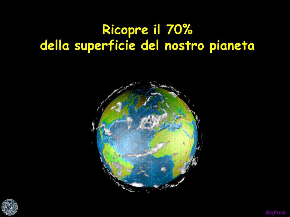 Biofisica Ricopre il 70% della superficie del nostro pianeta