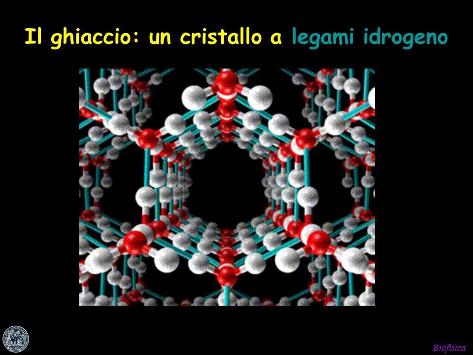 Il ghiaccio: un cristallo a legami idrogeno