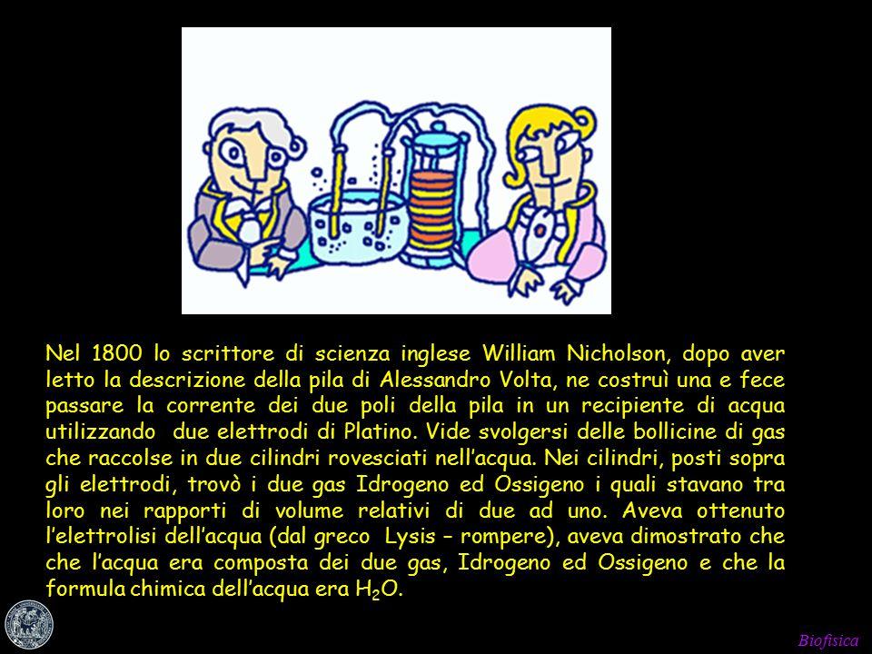Biofisica Nel 1800 lo scrittore di scienza inglese William Nicholson, dopo aver letto la descrizione della pila di Alessandro Volta, ne costruì una e fece passare la corrente dei due poli della pila in un recipiente di acqua utilizzando due elettrodi di Platino.