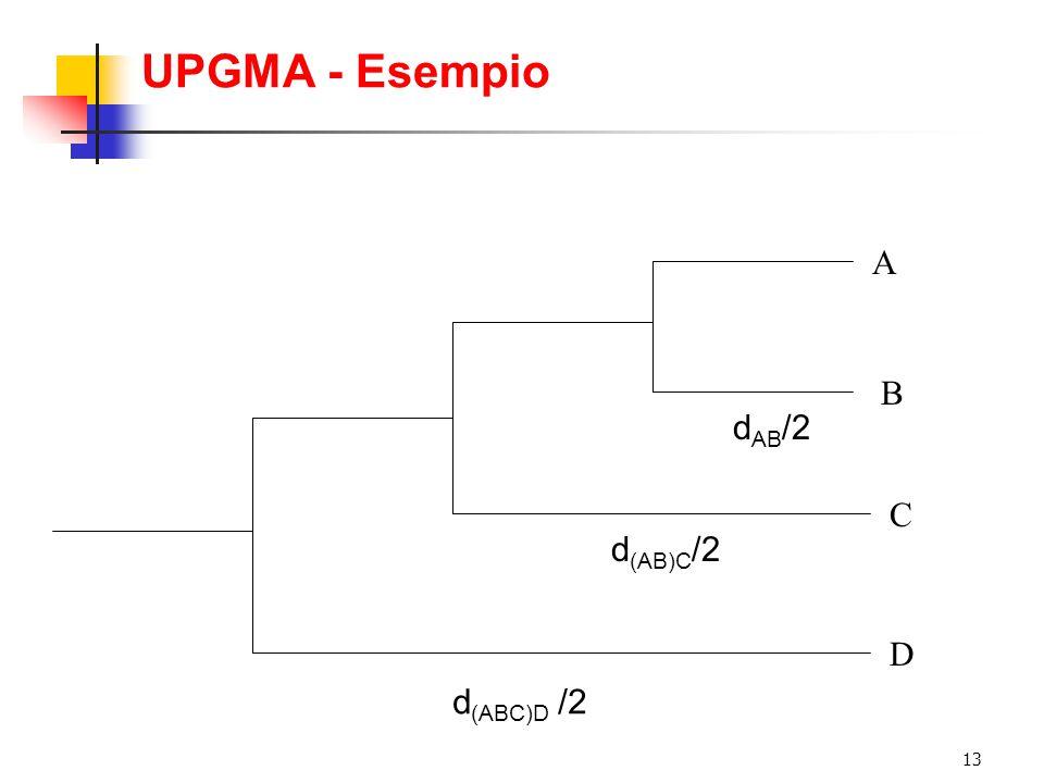 13 UPGMA - Esempio A B C D d AB /2 d (AB)C /2 d (ABC)D /2