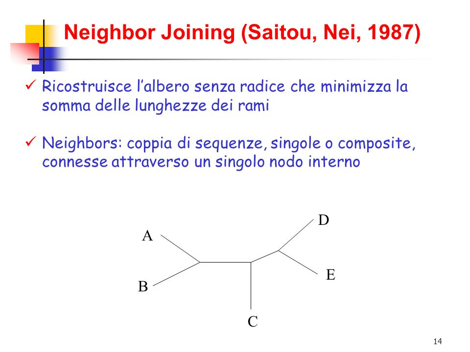 14 Neighbor Joining (Saitou, Nei, 1987) Ricostruisce l'albero senza radice che minimizza la somma delle lunghezze dei rami Neighbors: coppia di sequen