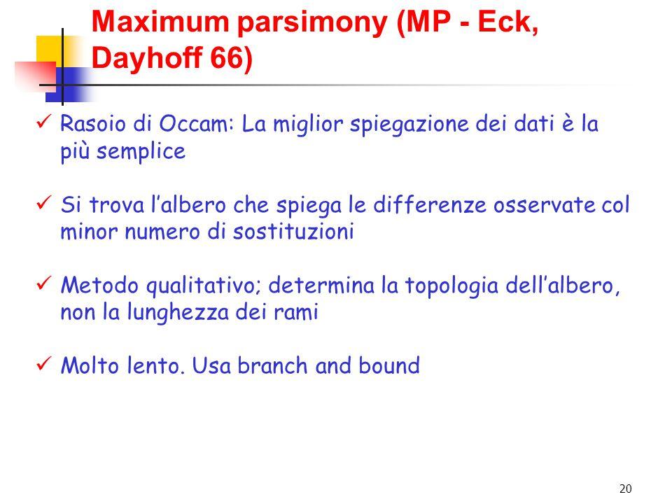 20 Maximum parsimony (MP - Eck, Dayhoff 66) Rasoio di Occam: La miglior spiegazione dei dati è la più semplice Si trova l'albero che spiega le differe