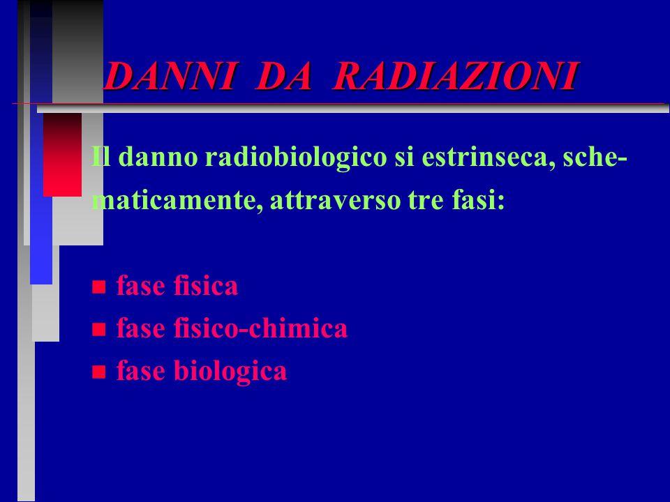 DANNI DA RADIAZIONI Il danno radiobiologico si estrinseca, sche- maticamente, attraverso tre fasi: n n fase fisica n n fase fisico-chimica n n fase bi