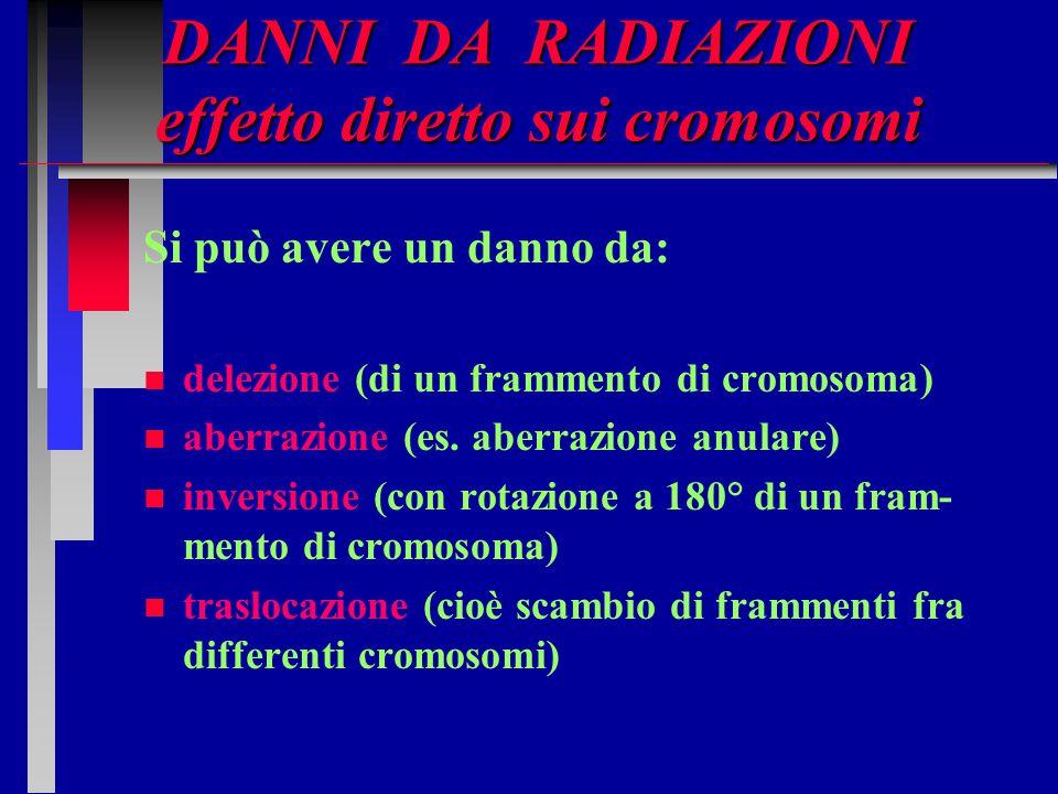 DANNI DA RADIAZIONI effetto diretto sui cromosomi Si può avere un danno da: n n delezione (di un frammento di cromosoma) n n aberrazione (es. aberrazi