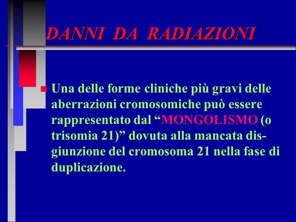 """DANNI DA RADIAZIONI n n Una delle forme cliniche più gravi delle aberrazioni cromosomiche può essere rappresentato dal """"MONGOLISMO (o trisomia 21)"""" do"""