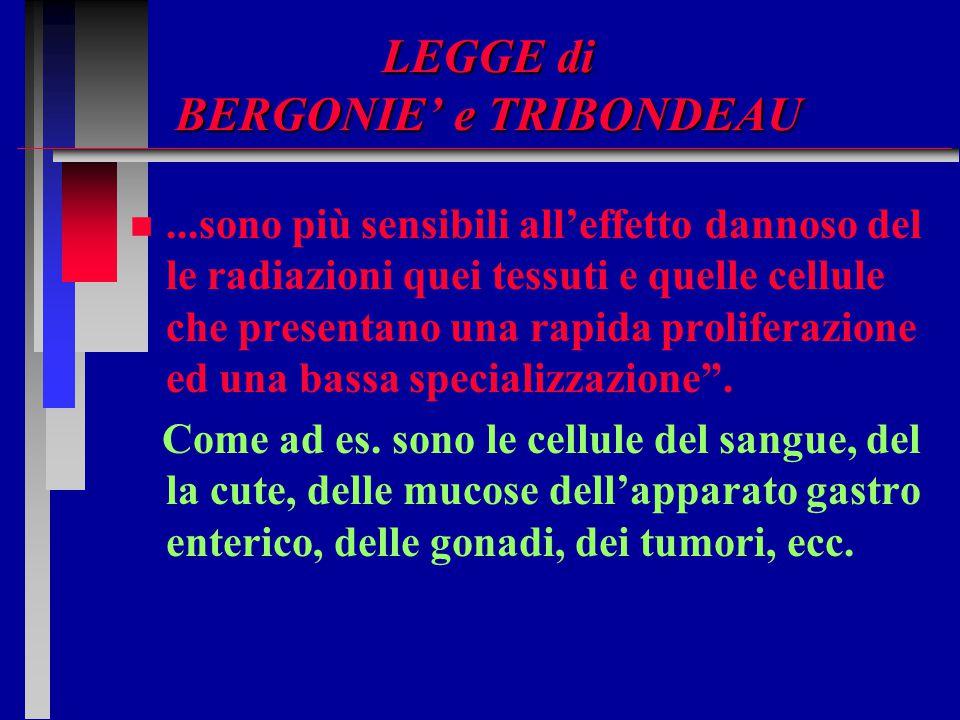 LEGGE di BERGONIE' e TRIBONDEAU n n...sono più sensibili all'effetto dannoso del le radiazioni quei tessuti e quelle cellule che presentano una rapida