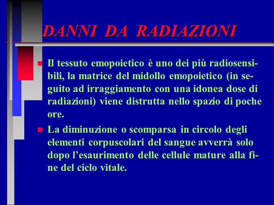 DANNI DA RADIAZIONI n n Il tessuto emopoietico è uno dei più radiosensi- bili, la matrice del midollo emopoietico (in se- guito ad irraggiamento con u