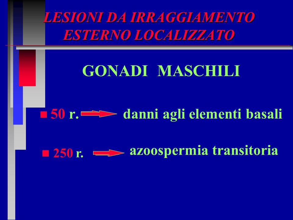 LESIONI DA IRRAGGIAMENTO ESTERNO LOCALIZZATO GONADI MASCHILI n n 50 r. danni agli elementi basali n 250 r. azoospermia transitoria