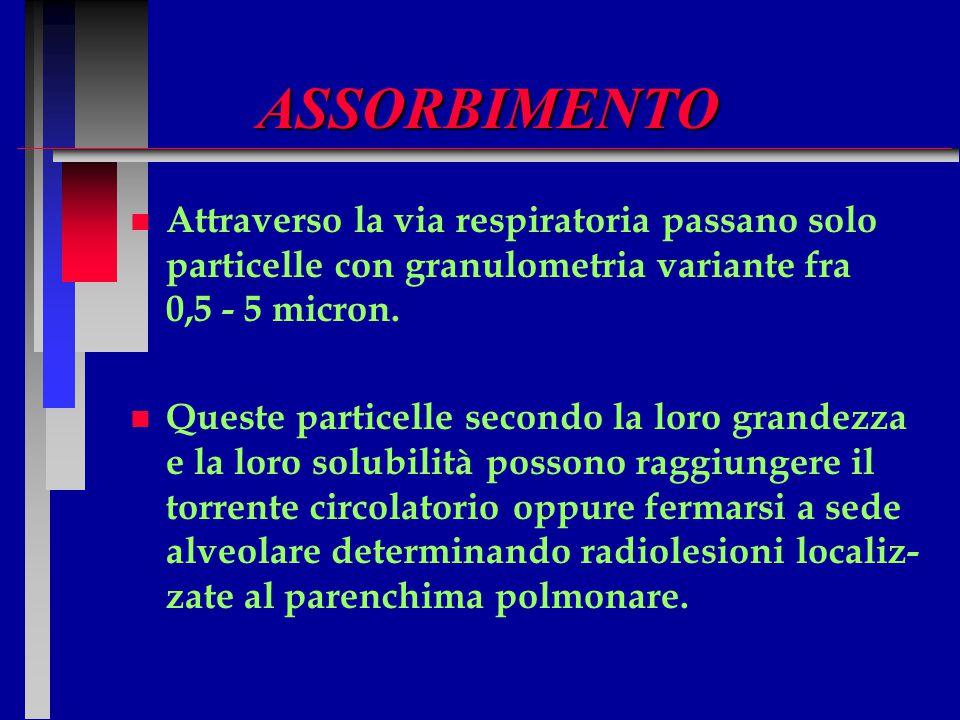 ASSORBIMENTO n n Attraverso la via respiratoria passano solo particelle con granulometria variante fra 0,5 - 5 micron. n n Queste particelle secondo l