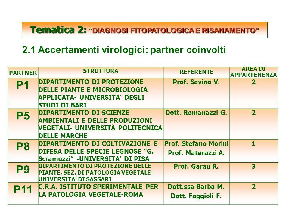 SCARTATE Tematica 2: DIAGNOSI FITOPATOLOGICA E RISANAMENTO Tematica 2: DIAGNOSI FITOPATOLOGICA E RISANAMENTO 2.1 Accertamenti virologici: partner coinvolti PARTNER STRUTTURA REFERENTE AREA DI APPARTENENZA P1 DIPARTIMENTO DI PROTEZIONE DELLE PIANTE E MICROBIOLOGIA APPLICATA- UNIVERSITA' DEGLI STUDI DI BARI Prof.