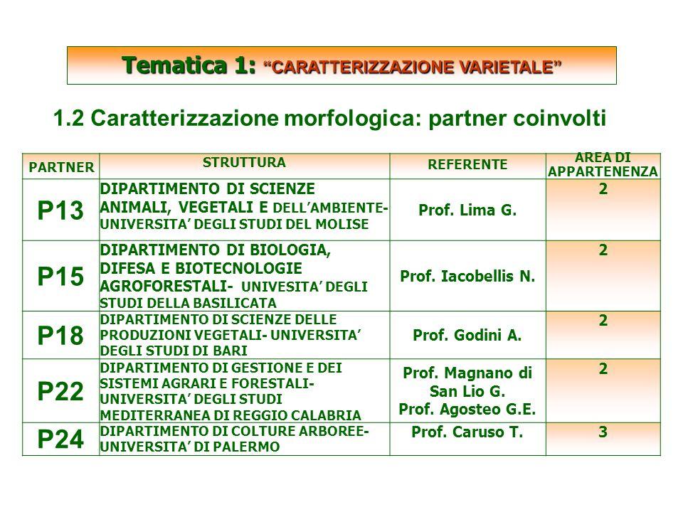 SCARTATE PARTNER STRUTTURA REFERENTE AREA DI APPARTENENZA P13 DIPARTIMENTO DI SCIENZE ANIMALI, VEGETALI E DELL'AMBIENTE- UNIVERSITA' DEGLI STUDI DEL MOLISE Prof.