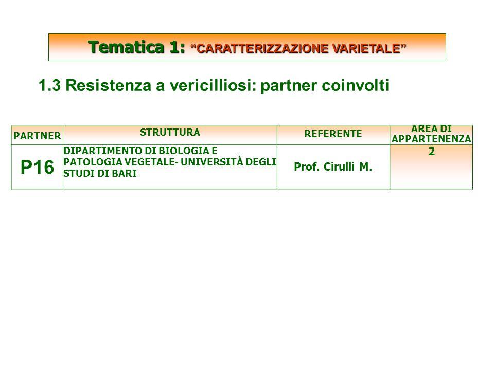 SCARTATE PARTNER STRUTTURA REFERENTE AREA DI APPARTENENZA P16 DIPARTIMENTO DI BIOLOGIA E PATOLOGIA VEGETALE- UNIVERSITÀ DEGLI STUDI DI BARI Prof.