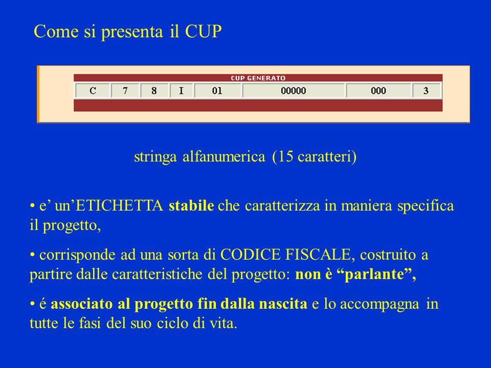 Come si presenta il CUP stringa alfanumerica (15 caratteri) e' un'ETICHETTA stabile che caratterizza in maniera specifica il progetto, corrisponde ad