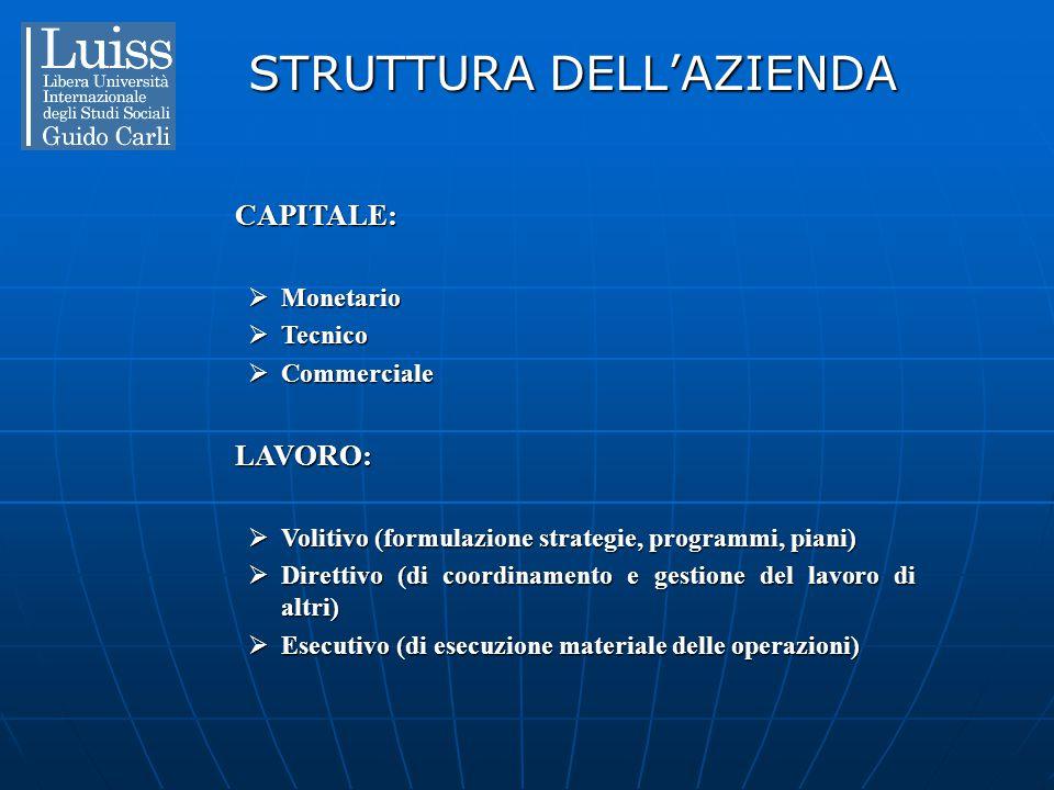 STRUTTURA DELL'AZIENDA CAPITALE:  Monetario  Tecnico  Commerciale LAVORO:  Volitivo (formulazione strategie, programmi, piani)  Direttivo (di coo