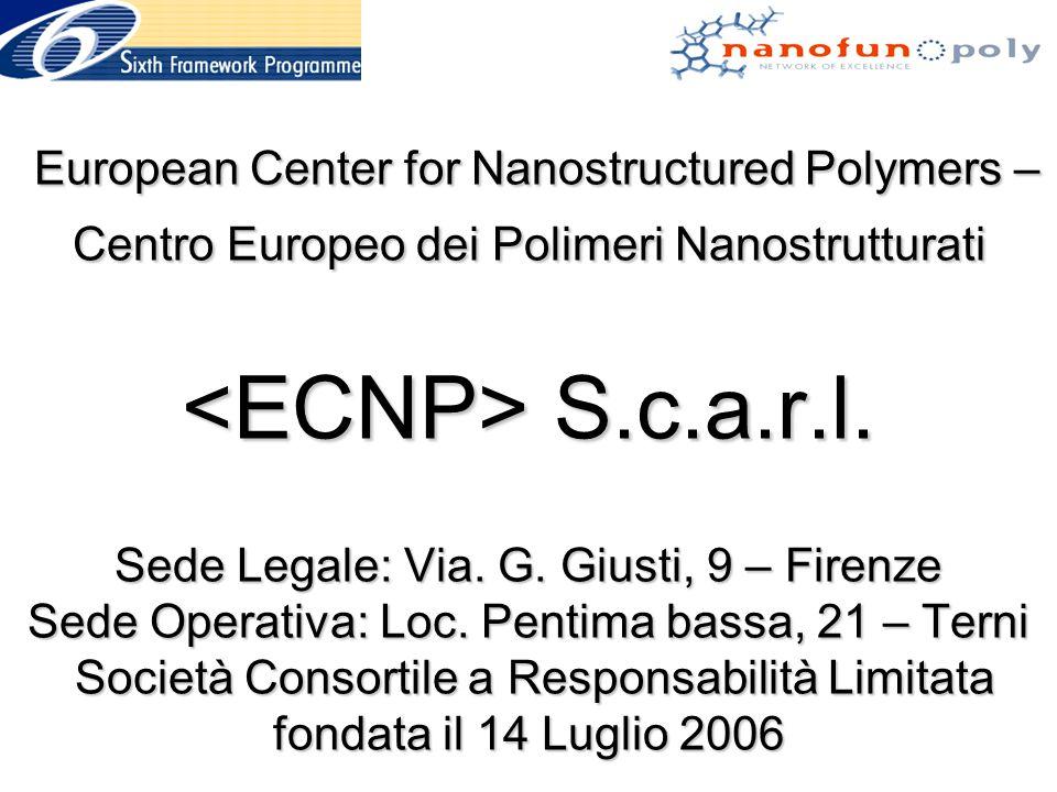 Principali attività dell'ECNP (2006-2007) Inaugurazione Sede di Terni (presso locali del Comune) Progetto Europeo MULTIHYBRIDS (FP6) Master Europeo in Nanotecnologie dei Polimeri (UNIPG-3a Edizione) Dottorato Internazionale di Ricerca in Nanotecnologia dei Materiali (UNIPG) Scuola Europea di Nanotecnologie dei Polimeri - Santiago di Compostela (2007), Terni (2008) Donazione Fondazione CARIT per impianto pilota di produzione nanocompositi polimerici Installazione web-site (www.ecnp.eu.int)www.ecnp.eu.int Lancio sottoscrizione soci ECNP Lancio proposte di Progetti FP7