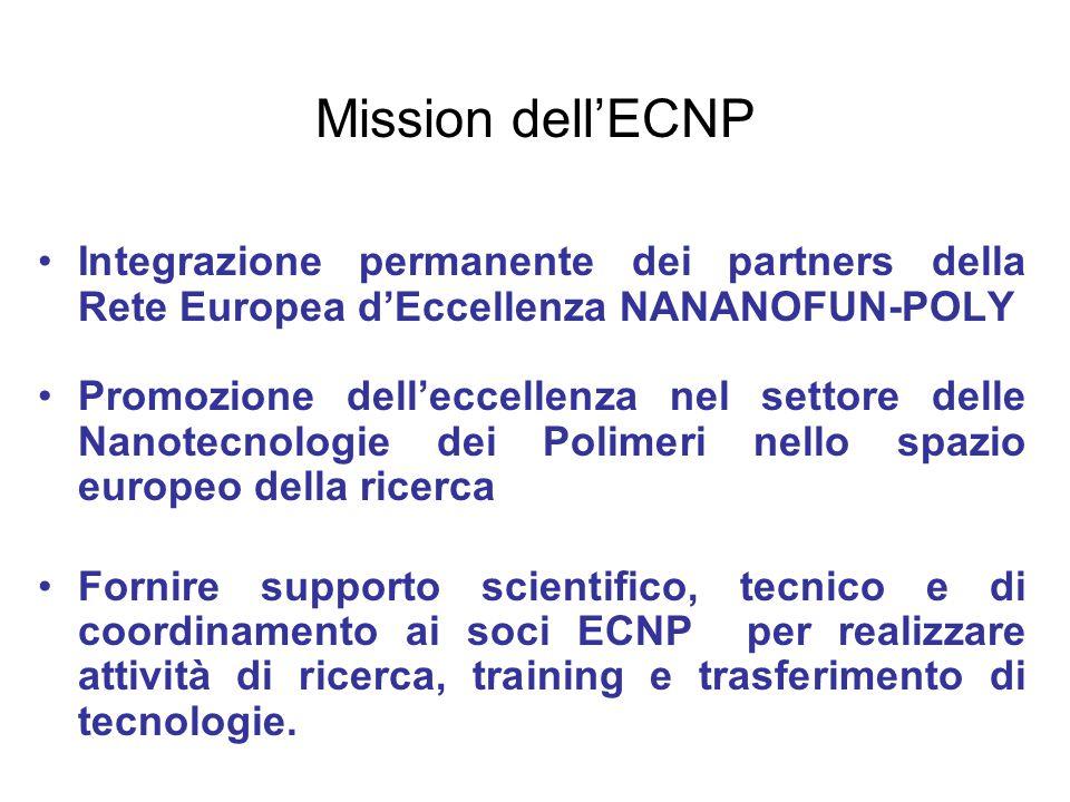 Mission dell'ECNP Integrazione permanente dei partners della Rete Europea d'Eccellenza NANANOFUN-POLY Promozione dell'eccellenza nel settore delle Nan