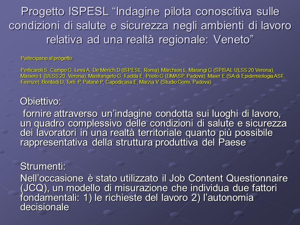 """Progetto ISPESL """"Indagine pilota conoscitiva sulle condizioni di salute e sicurezza negli ambienti di lavoro relativa ad una realtà regionale: Veneto"""""""