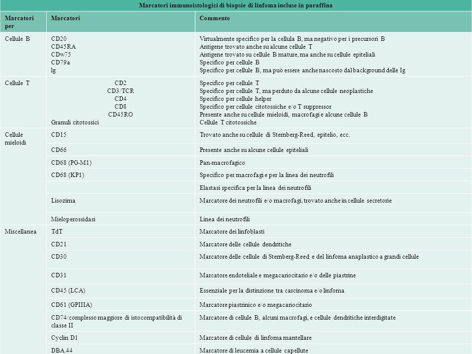 Marcatori immunoistologici di biopsie di linfoma incluse in paraffina Marcatori per MarcatoriCommento Cellule BCD20 CD45RA CDw75 CD79a lg Virtualmente specifico per la cellula B, ma negativo per i precursori B Antigene trovato anche su alcune cellule T Antigene trovato su cellule B mature, ma anche su cellule epiteliali Specifico per cellule B Specifico per cellule B, ma può essere anche nascosto dal background delle Ig Cellule TCD2 CD3/TCR CD4 CD8 CD45RO Granuli citotossici Specifico per cellule T Specifico per cellule T, ma perduto da alcune cellule neoplastiche Specifico per cellule helper Specifico per cellule citotossiche e/o T suppressor Presente anche su cellule mieloidi, macrofagi e alcune cellule B Cellule T citotossiche Cellule mieloidi CD15Trovato anche su cellule di Sternberg-Reed, epitelio, ecc.