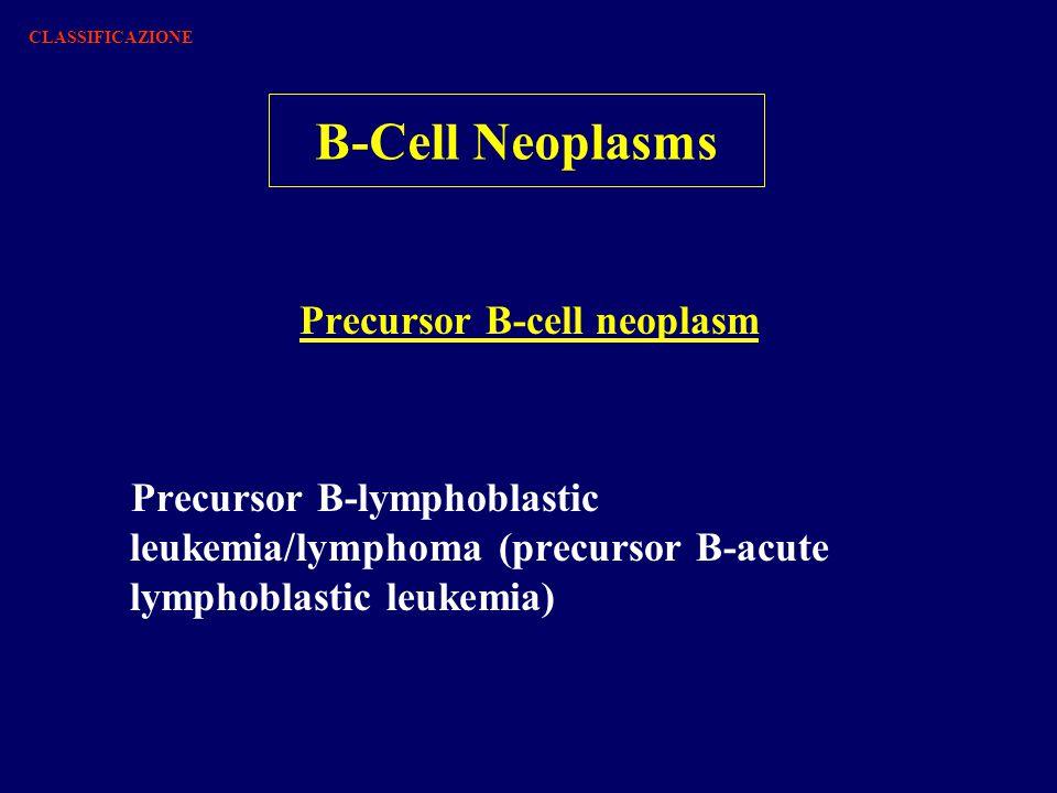 B-Cell Neoplasms Precursor B-cell neoplasm Precursor B-lymphoblastic leukemia/lymphoma (precursor B-acute lymphoblastic leukemia) CLASSIFICAZIONE