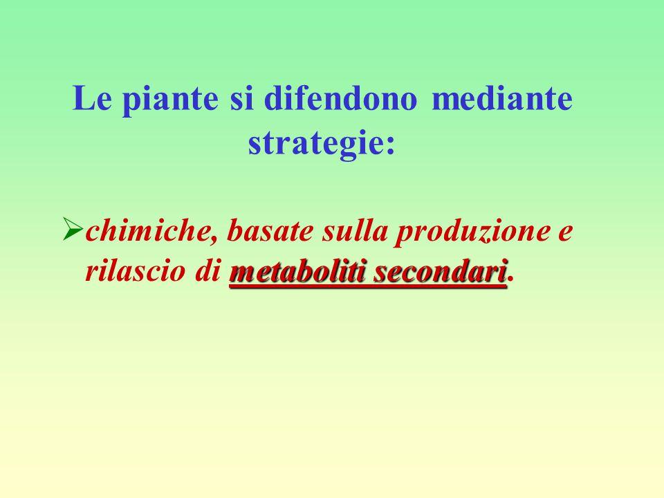 Molisch 1 la definì come: l'azione positiva o negativa di una specie vegetale sulla germinazione, la crescita e lo sviluppo di altre specie vegetali e Rice 2 aggiunse: …attraverso la produzione di composti chimici liberati nell'ambiente circostante .