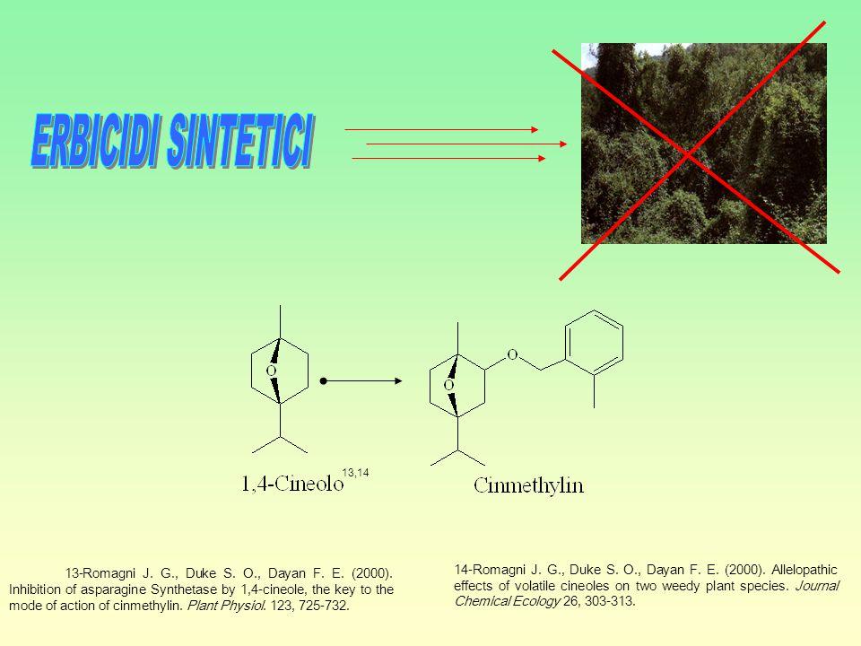 Lo studio chimico di Bermuda buttercap.ha portato all' isolamento di 11 composti.