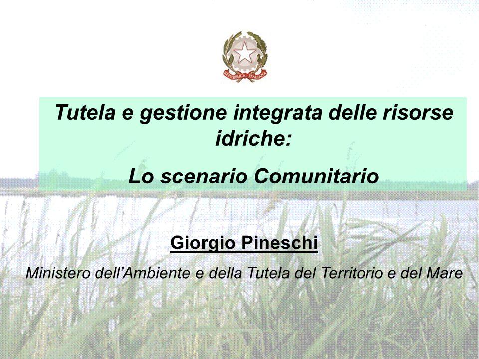 Giorgio Pineschi Ministero dell'Ambiente e della Tutela del Territorio e del Mare Tutela e gestione integrata delle risorse idriche: Lo scenario Comunitario