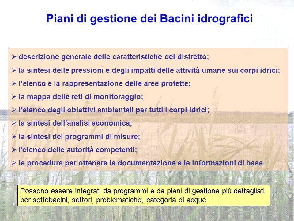 Piani di gestione dei Bacini idrografici  descrizione generale delle caratteristiche del distretto;  la sintesi delle pressioni e degli impatti dell