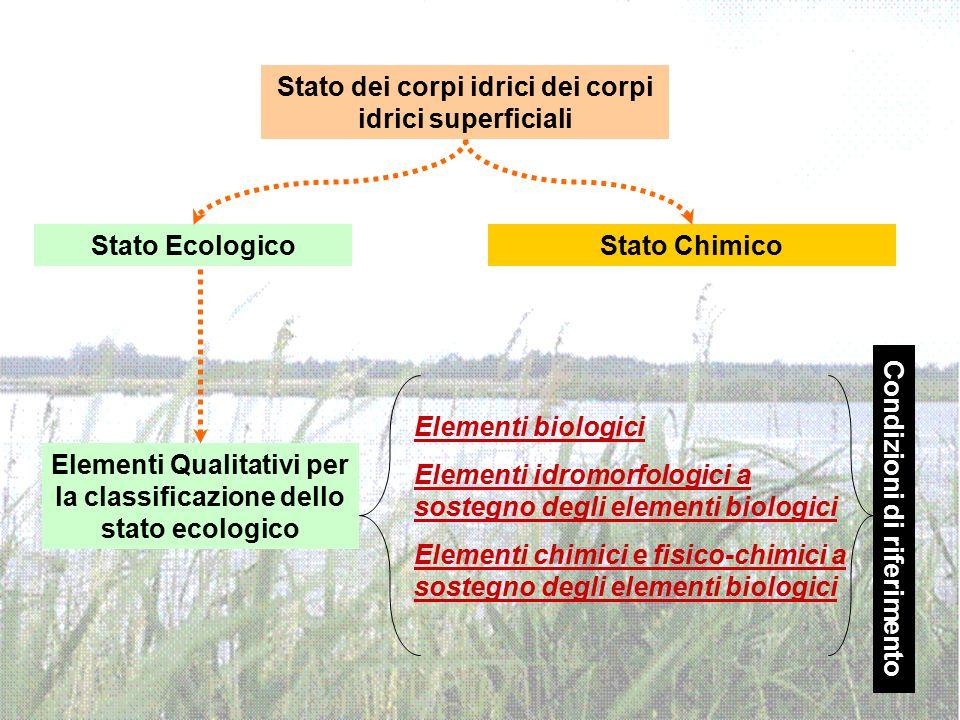 Stato dei corpi idrici dei corpi idrici superficiali Stato EcologicoStato Chimico Elementi Qualitativi per la classificazione dello stato ecologico El