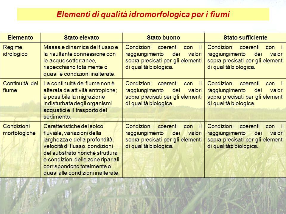 Elementi di qualità idromorfologica per i fiumi ElementoStato elevatoStato buonoStato sufficiente Regime idrologico Massa e dinamica del flusso e la r