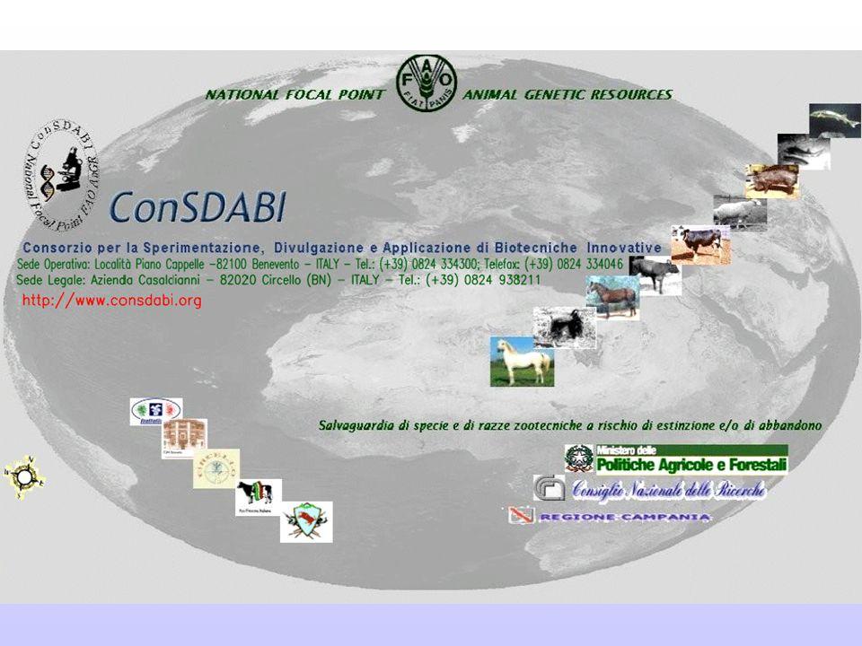 LA MANIFESTAZIONE QUANTI-QUALITATIVA DI UNA ESPRESSIONE FENOTIPICA, IN CHIAVE SISTEMICA, E' FUNZIONE DI DIVERSI PIANI ORGANIZZATIVI SINTETIZZABILI COME SEGUE: ConSDABI NATIONAL FOCAL POINT ITALIANO - FAO SUBMOLECOLARE MOLECOLARE CELLULARE TISSUTALE DI ORGANO ORGANISMICO BIOCENOTICO ECOSISTEMICO (O PAESAGGISTICO) 12