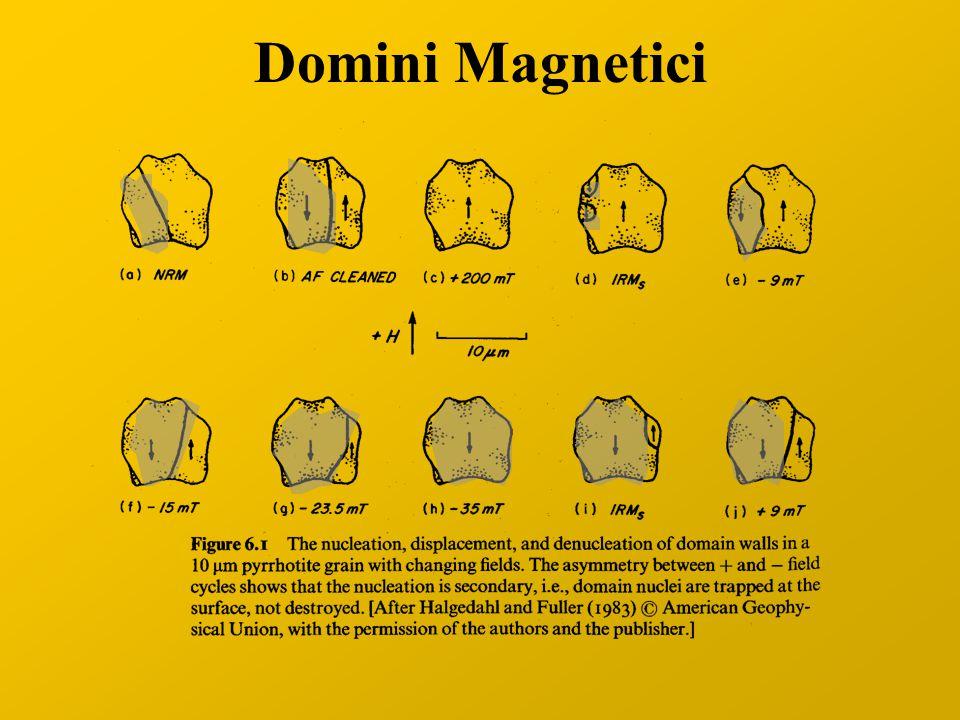 Domini Magnetici