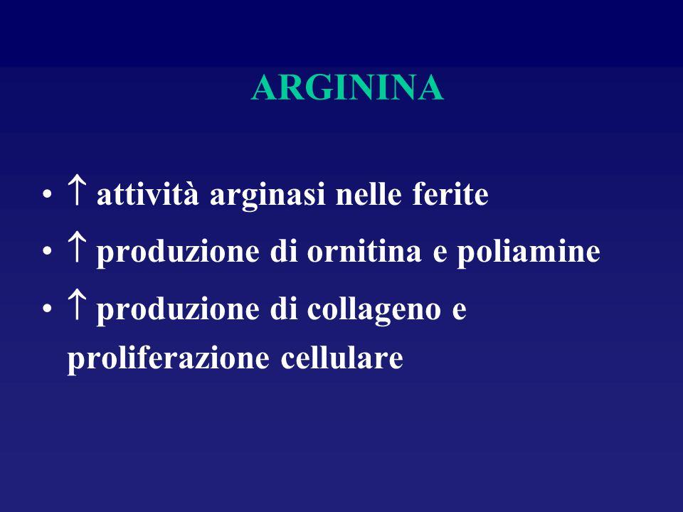 ARGININA  attività arginasi nelle ferite  produzione di ornitina e poliamine  produzione di collageno e proliferazione cellulare