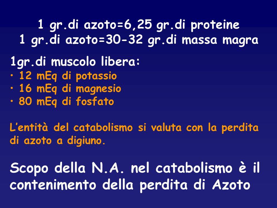 1 gr.di azoto=6,25 gr.di proteine 1 gr.di azoto=30-32 gr.di massa magra 1gr.di muscolo libera: 12 mEq di potassio 16 mEq di magnesio 80 mEq di fosfato