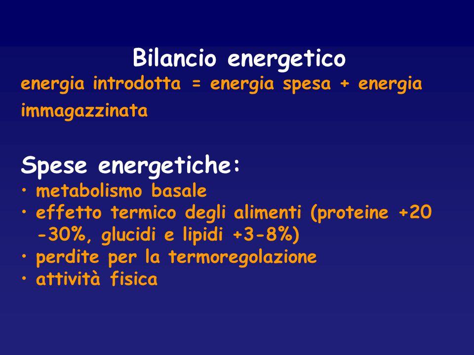 Bilancio energetico energia introdotta = energia spesa + energia immagazzinata Spese energetiche: metabolismo basale effetto termico degli alimenti (p