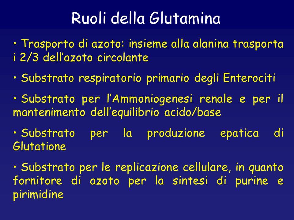 Ruoli della Glutamina Trasporto di azoto: insieme alla alanina trasporta i 2/3 dell'azoto circolante Substrato respiratorio primario degli Enterociti