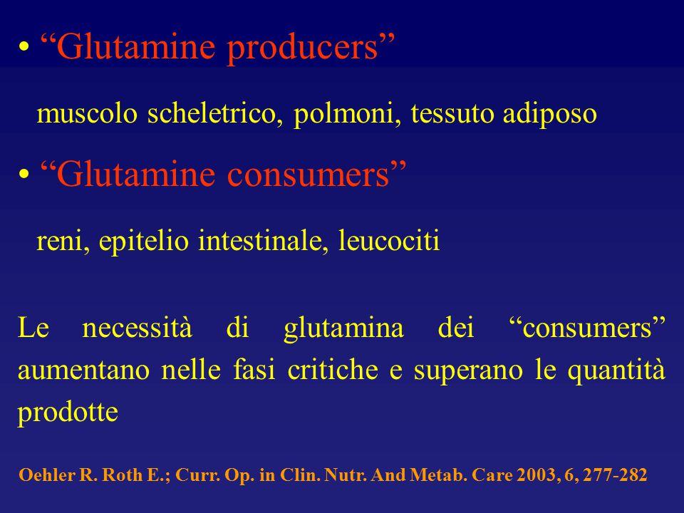 """""""Glutamine producers"""" muscolo scheletrico, polmoni, tessuto adiposo """"Glutamine consumers"""" reni, epitelio intestinale, leucociti Le necessità di glutam"""