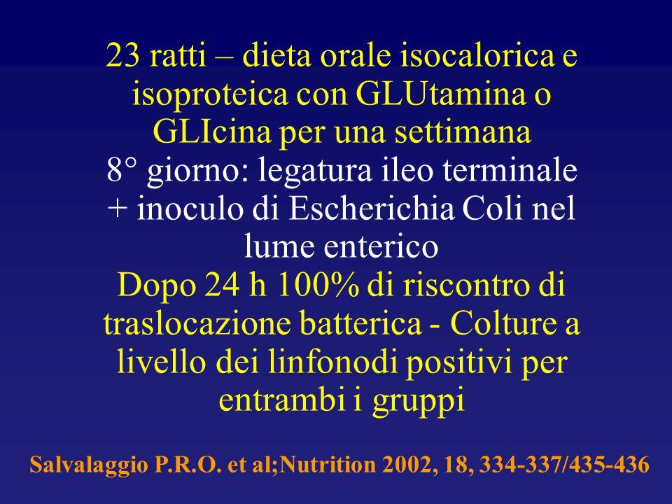 23 ratti – dieta orale isocalorica e isoproteica con GLUtamina o GLIcina per una settimana 8° giorno: legatura ileo terminale + inoculo di Escherichia