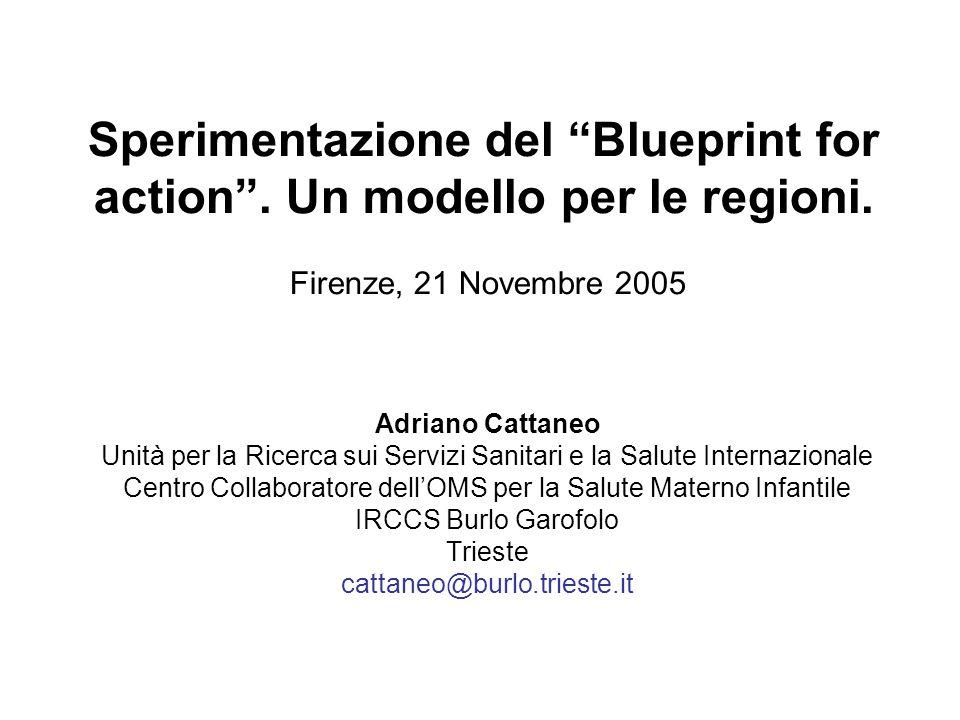 Progetto pilota: lavoro svolto Prima riunione a Firenze, giugno 2005 Analisi della situazione di ogni paese partecipante in relazione al Blueprint Primo tentativo di elaborare priorità nazionali e locali Griglia per una valutazione standard del processo di implementazione Difficoltà per la valutazione standard dei tassi di allattamento