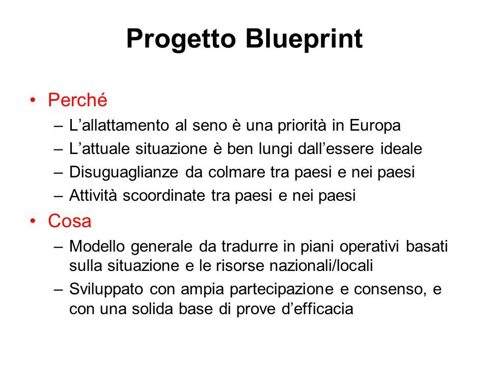 Progetto Blueprint Perché –L'allattamento al seno è una priorità in Europa –L'attuale situazione è ben lungi dall'essere ideale –Disuguaglianze da colmare tra paesi e nei paesi –Attività scoordinate tra paesi e nei paesi Cosa –Modello generale da tradurre in piani operativi basati sulla situazione e le risorse nazionali/locali –Sviluppato con ampia partecipazione e consenso, e con una solida base di prove d'efficacia