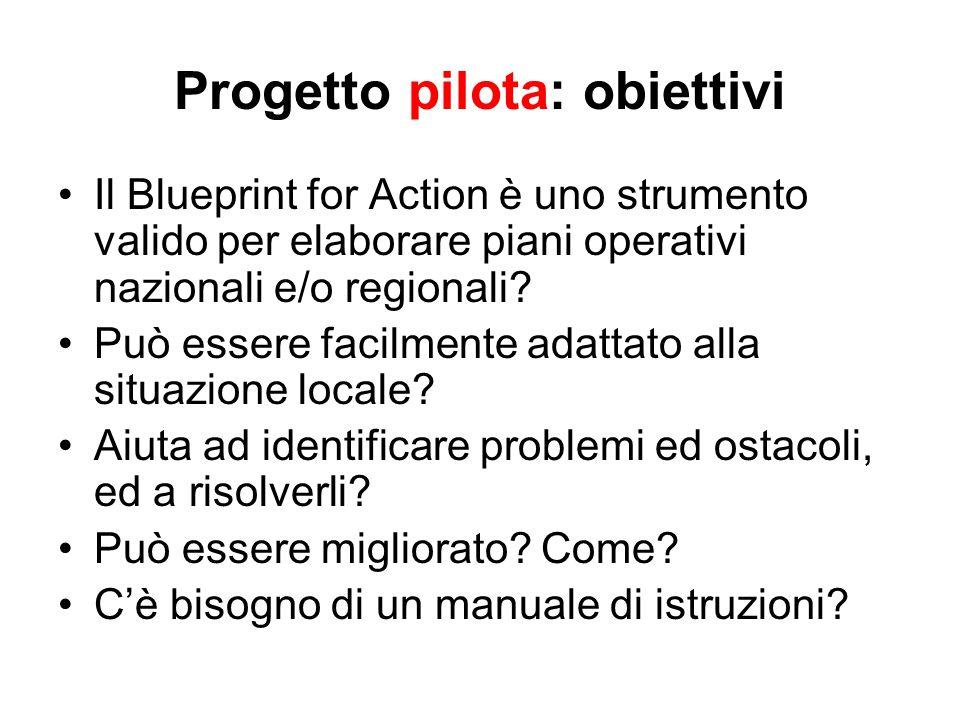 Progetto pilota: obiettivi Il Blueprint for Action è uno strumento valido per elaborare piani operativi nazionali e/o regionali.