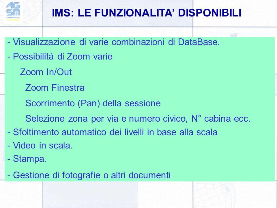 IMS: LE FUNZIONALITA' DISPONIBILI - Visualizzazione di varie combinazioni di DataBase. - Possibilità di Zoom varie Zoom In/Out Zoom Finestra Scorrimen