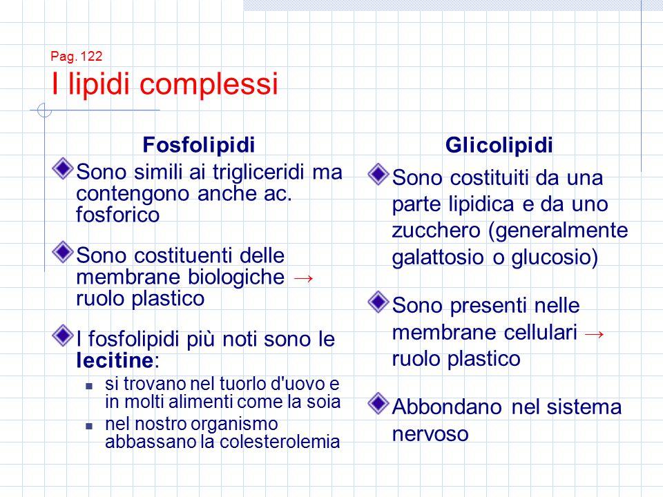 Pag. 122 I lipidi complessi Fosfolipidi Sono simili ai trigliceridi ma contengono anche ac. fosforico Sono costituenti delle membrane biologiche → ruo