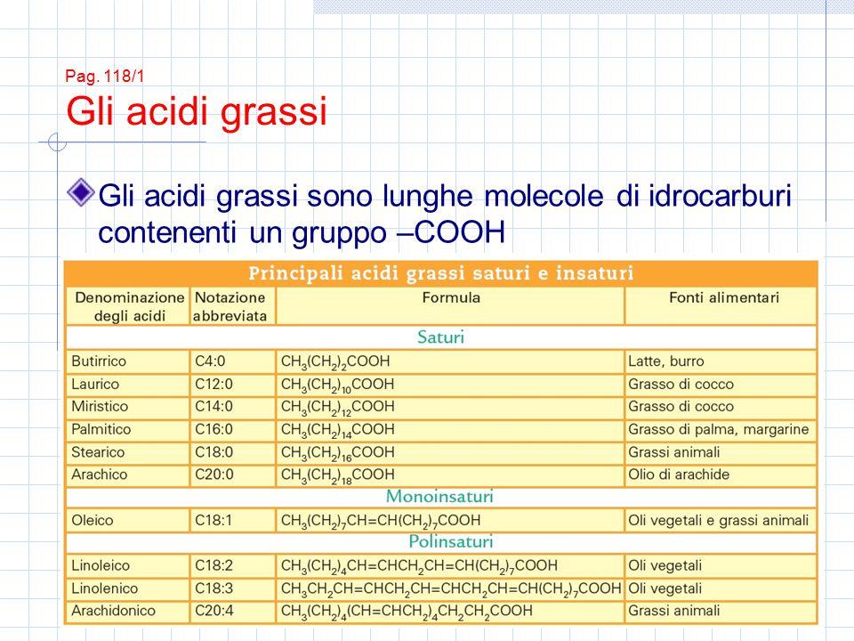 Gli acidi grassi sono lunghe molecole di idrocarburi contenenti un gruppo –COOH Pag. 118/1 Gli acidi grassi
